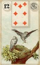 Lenormand Card 12 Birds Meaning & Combinations