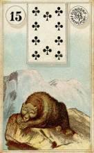 Lenormand Card 15 Bear Meaning & Combinations