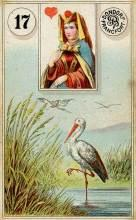 Lenormand Card 17 Stork Meaning & Combinations