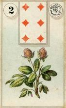 Lenormand Card 2 Clover Meaning & Combinations