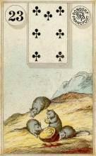 Lenormand Card 23 Mice Meaning & Combinations
