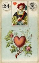 Lenormand Card 24 Heart Meaning & Combinations