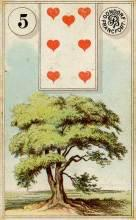 Lenormand Card Meanings & Combinations List - Phuture Me