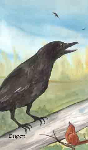 Queen of Crows (Pentacles)