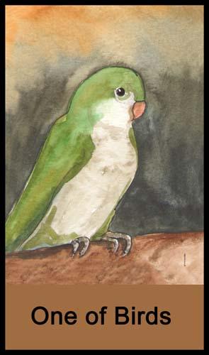 1 of Birds (Cups)
