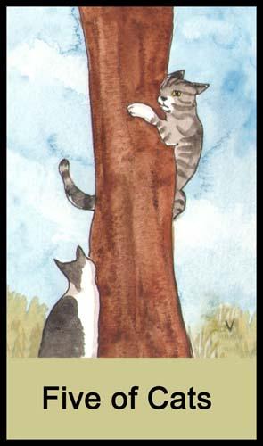 5 of Cats (Swords)