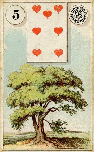 5.Tree