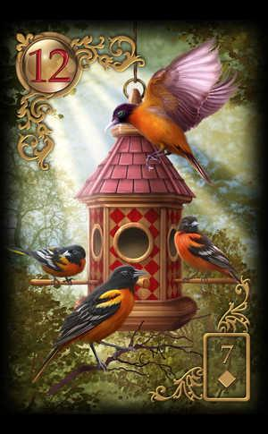 Oiseaux (Birds)