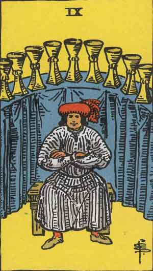 The 9 of Cups Tarot Card