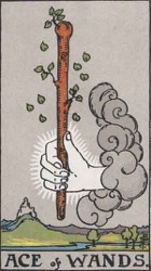 Ace of Wands, Rods or Batons, Tarot card meaning and interpretation